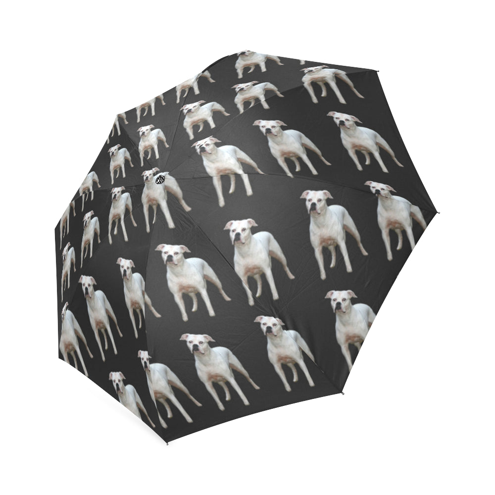 American Bulldog Umbrella