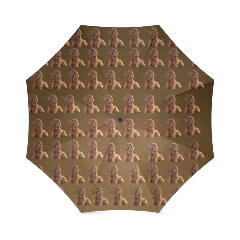 Irish Setter Umbrella
