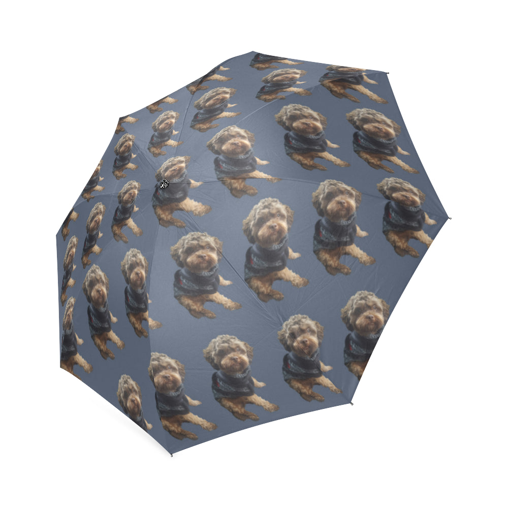 Shih Poo Umbrella - Blue