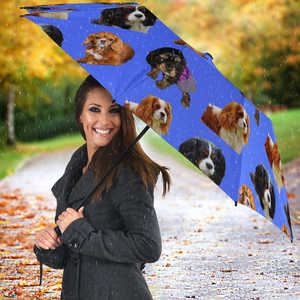 Cavalier King Charles Spaniel Umbrella - All