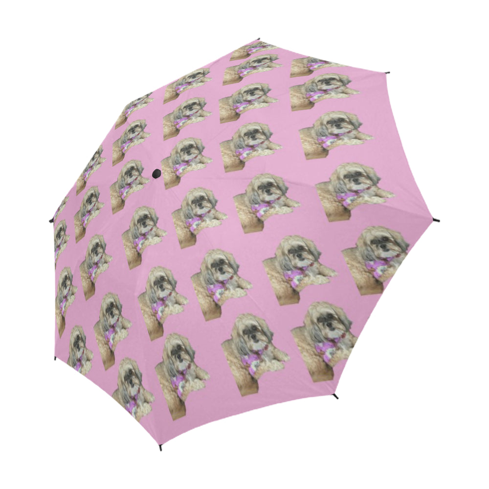 Shih Poo Umbrella - Pat D