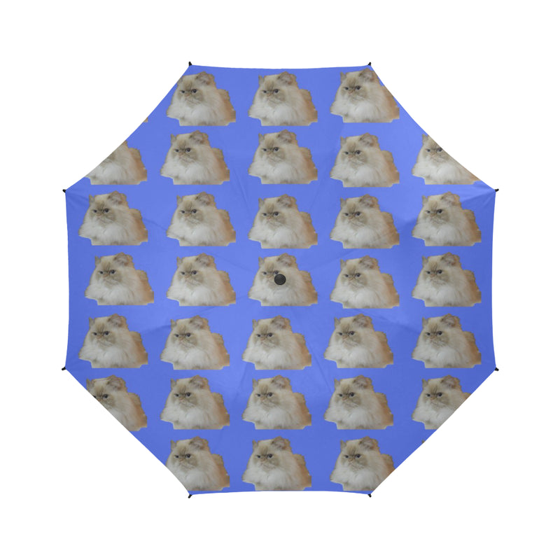 Flame Pointed Rag Doll Cat Umbrella