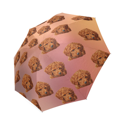 Brown Poodle Umbrella