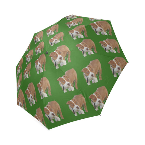 Pitbull Umbrella - Green