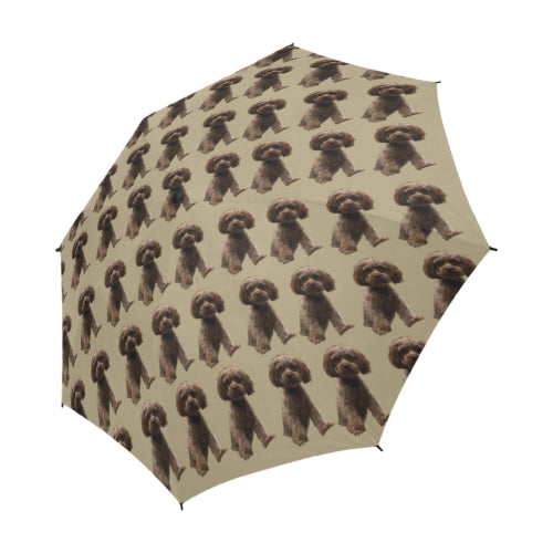 Shih Poo Umbrella Chocolate