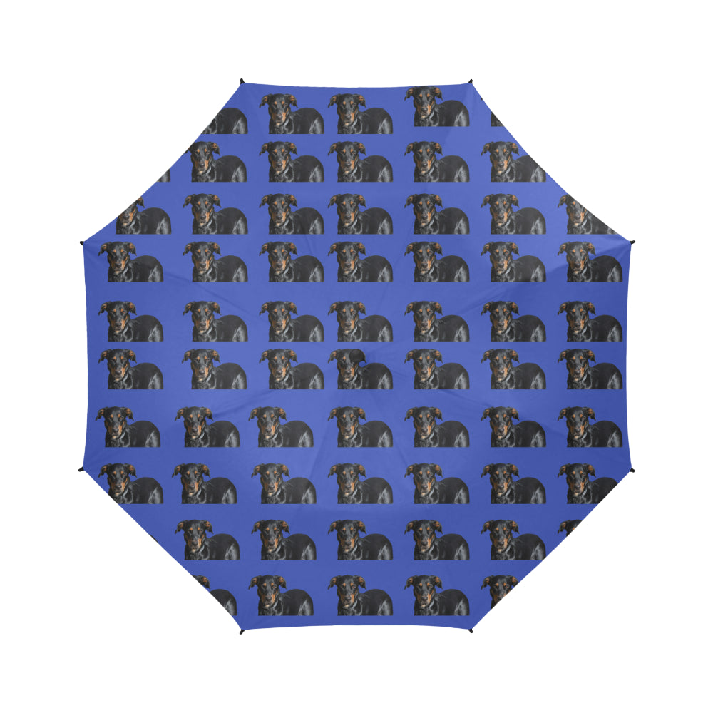Beauceron Umbrella - Semi-Automatic