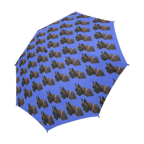 Boxer Umbrella - Blue