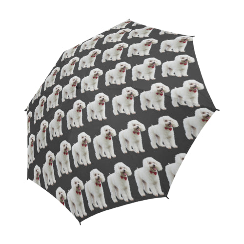 Toy Poodle Umbrella - White