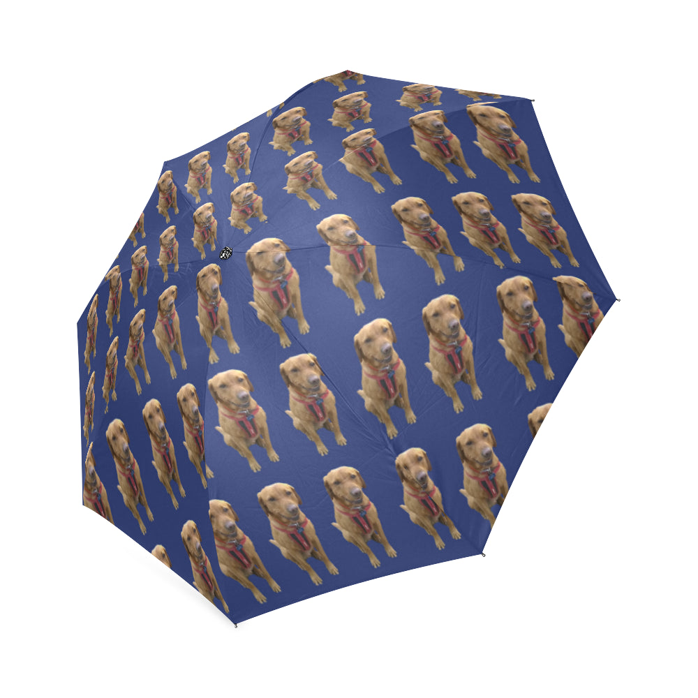 Fox Red Labrador Umbrella