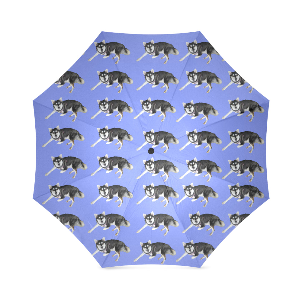 Alaskan Klee Kai Umbrella - Blue