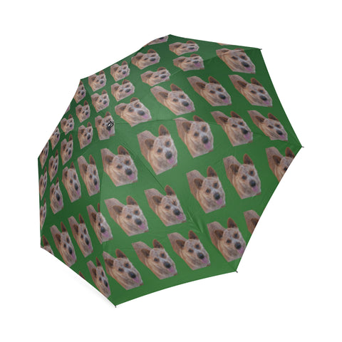 Australian Cattle Dog Umbrella