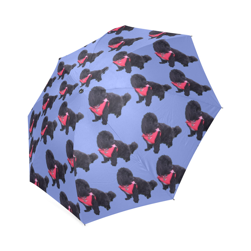 Shih Poo Umbrella - Black