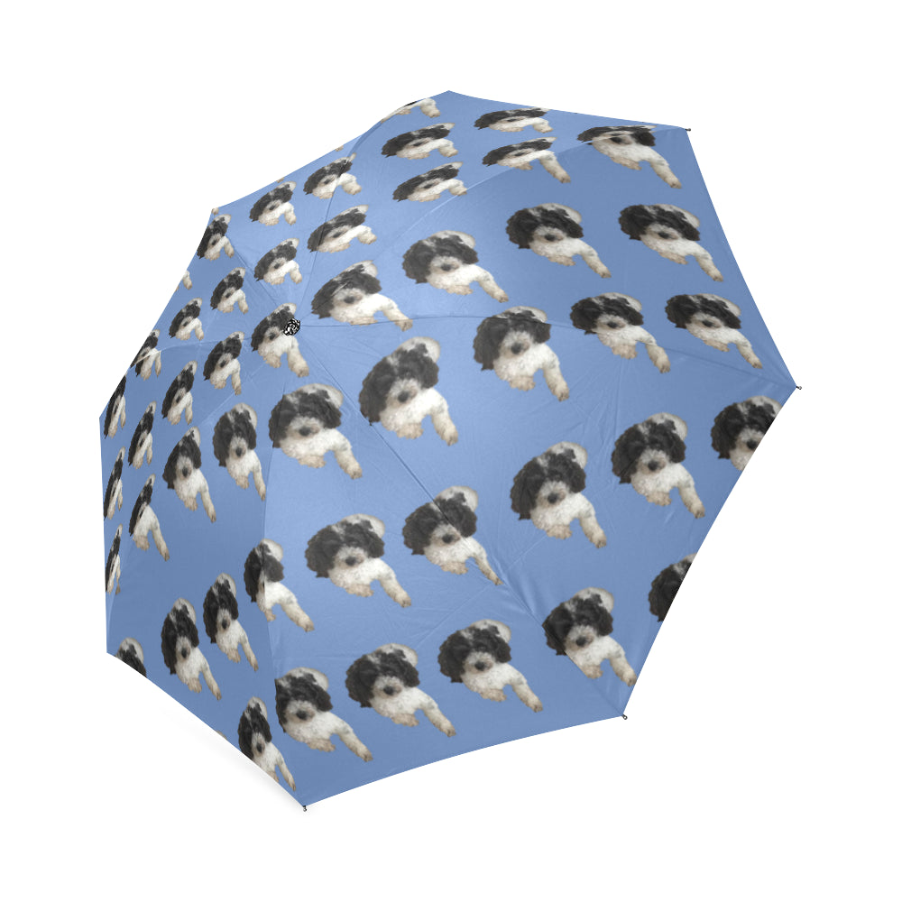 Cavapoo Umbrella