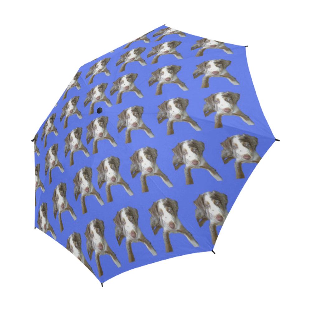 Catahoula Umbrella - Auto Open