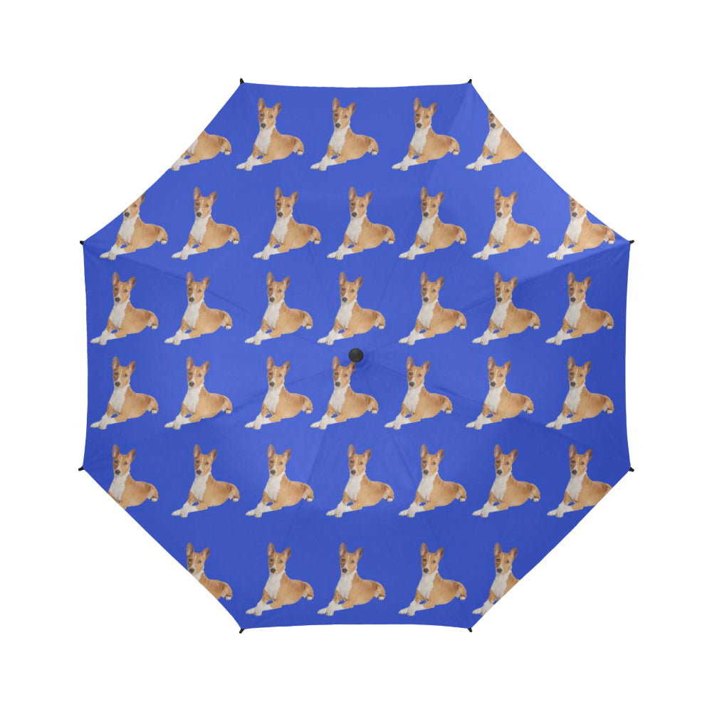 Basenji Umbrella - Blue Auto Open