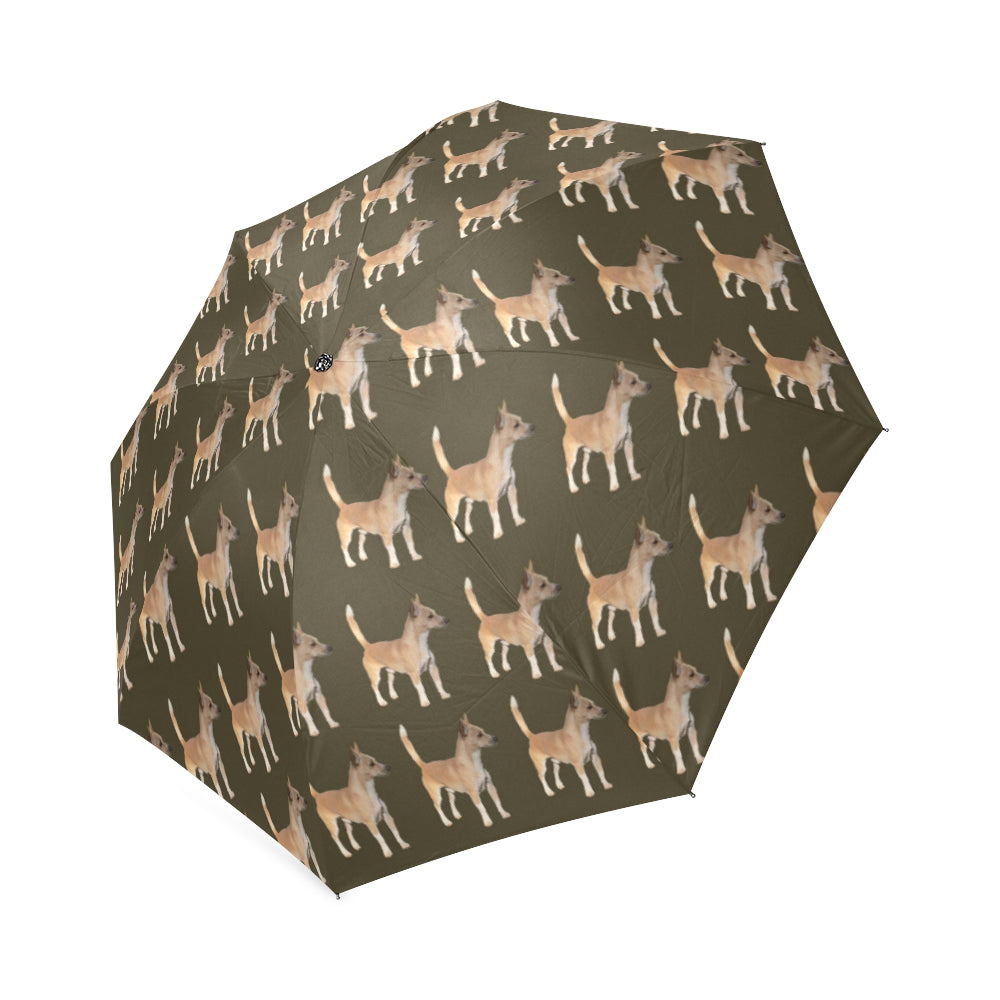 Portuguese Podengo Small Smooth-Haired Umbrella