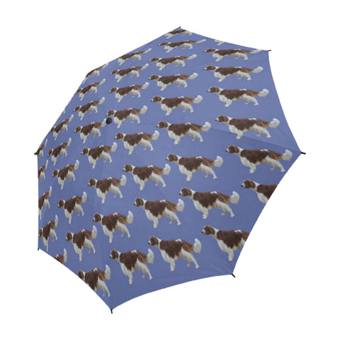 Welsh Springer Spaniel Umbrella