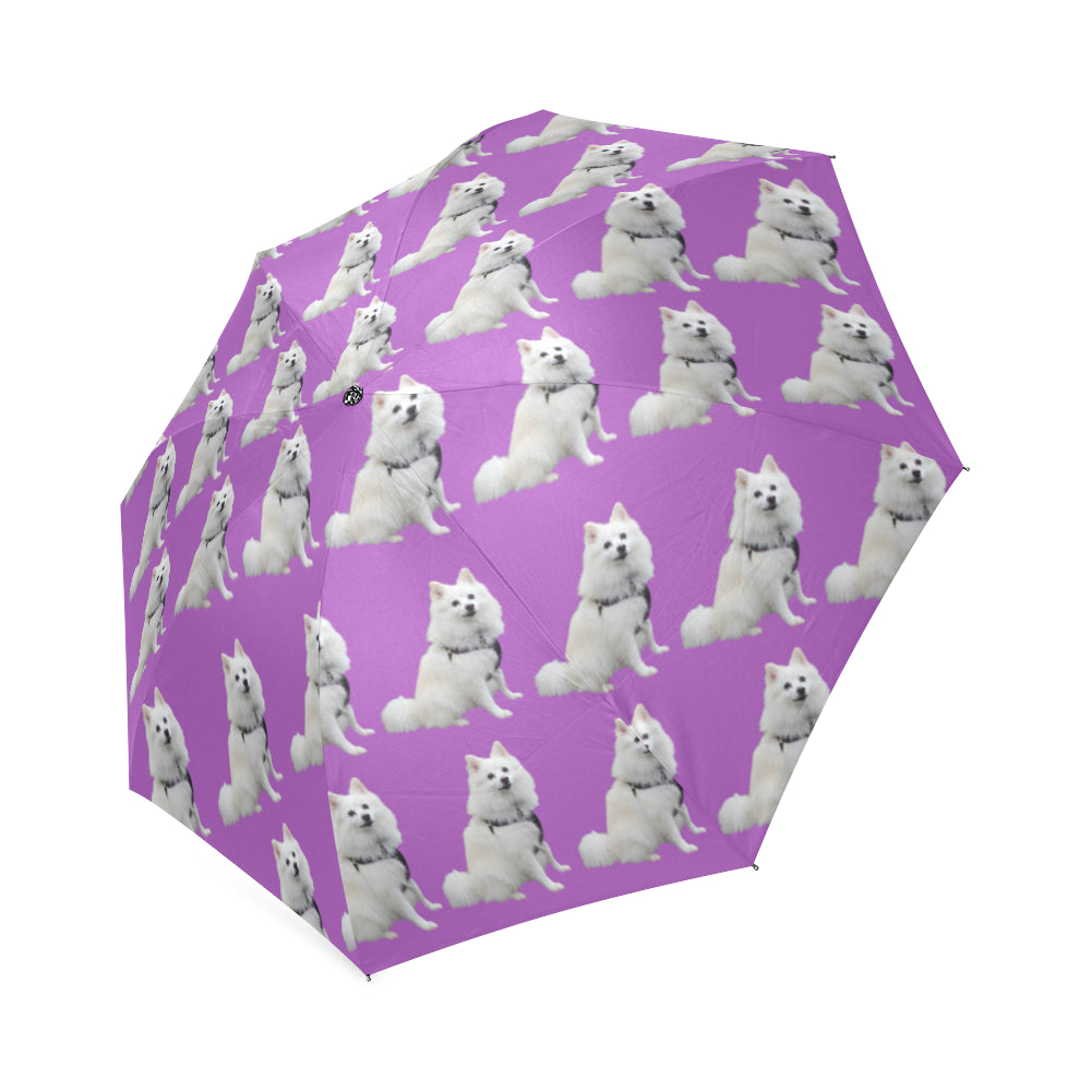 American Eskimo Umbrella