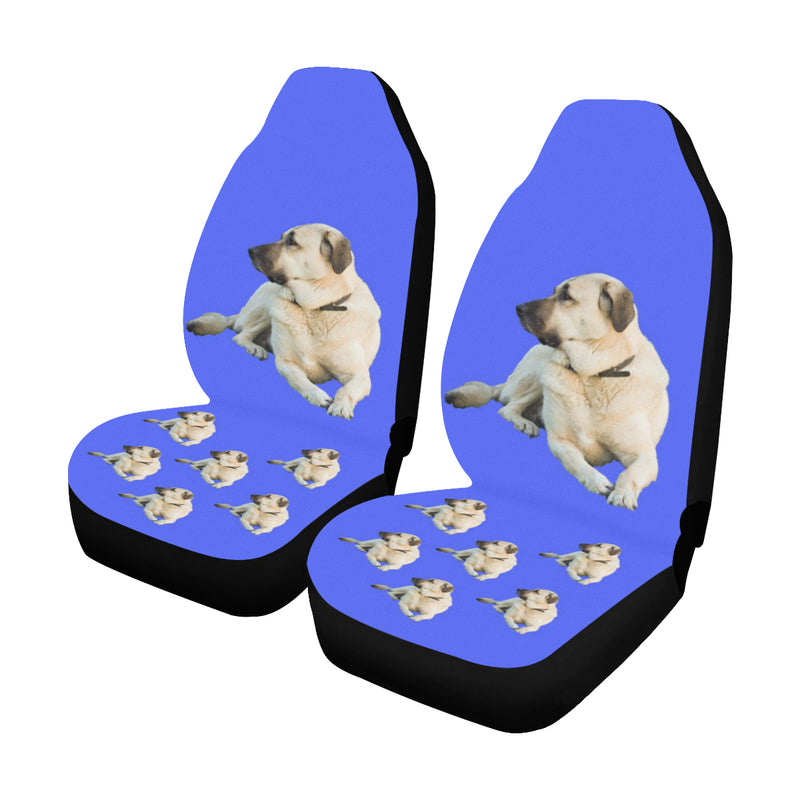 Anatolian Shepherd Car Seat Covers (Set of 2)