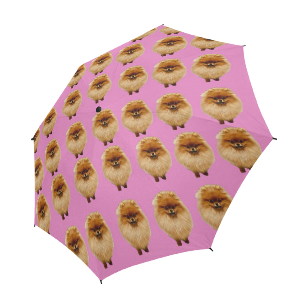 Pomeranian Umbrella - Pink