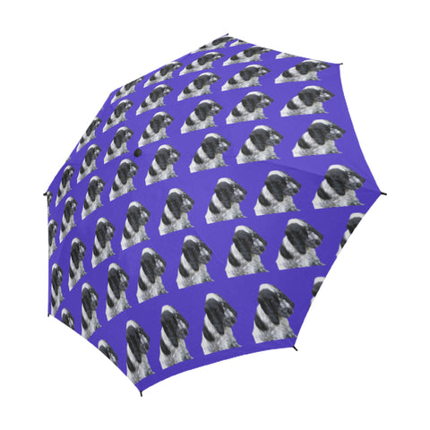 Cocker Spaniel Umbrella - Blue Roan