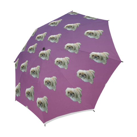 Pekingese Umbrella - Auto Open