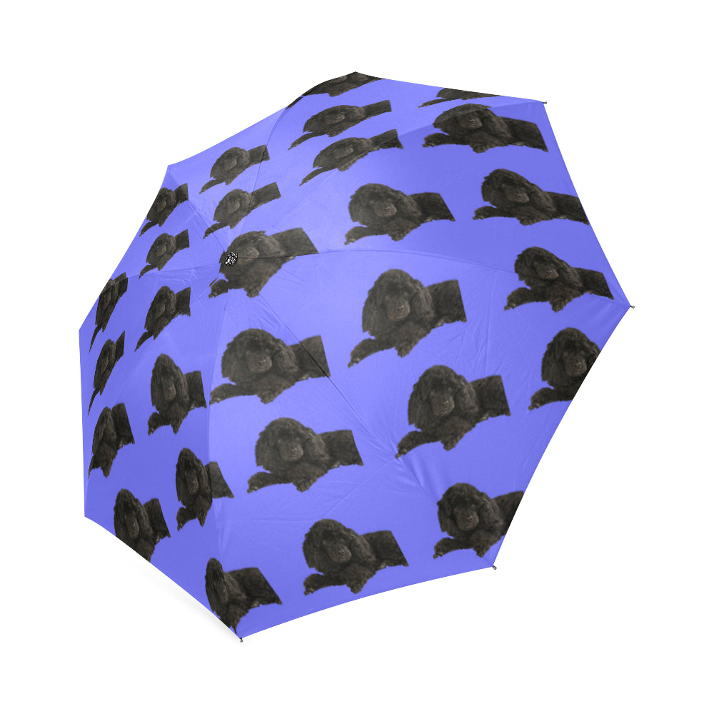 Poodle Umbrella - Black Toy Poodle