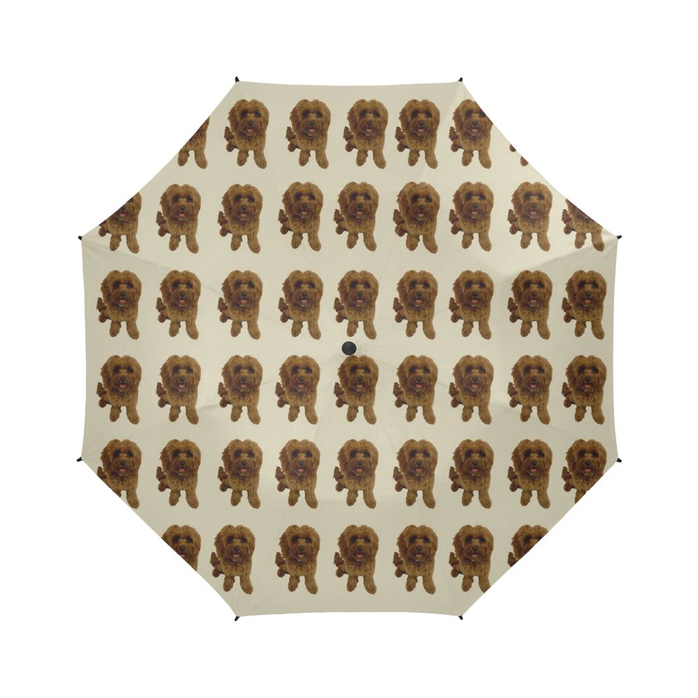 Cavapoo Umbrella - Peachie