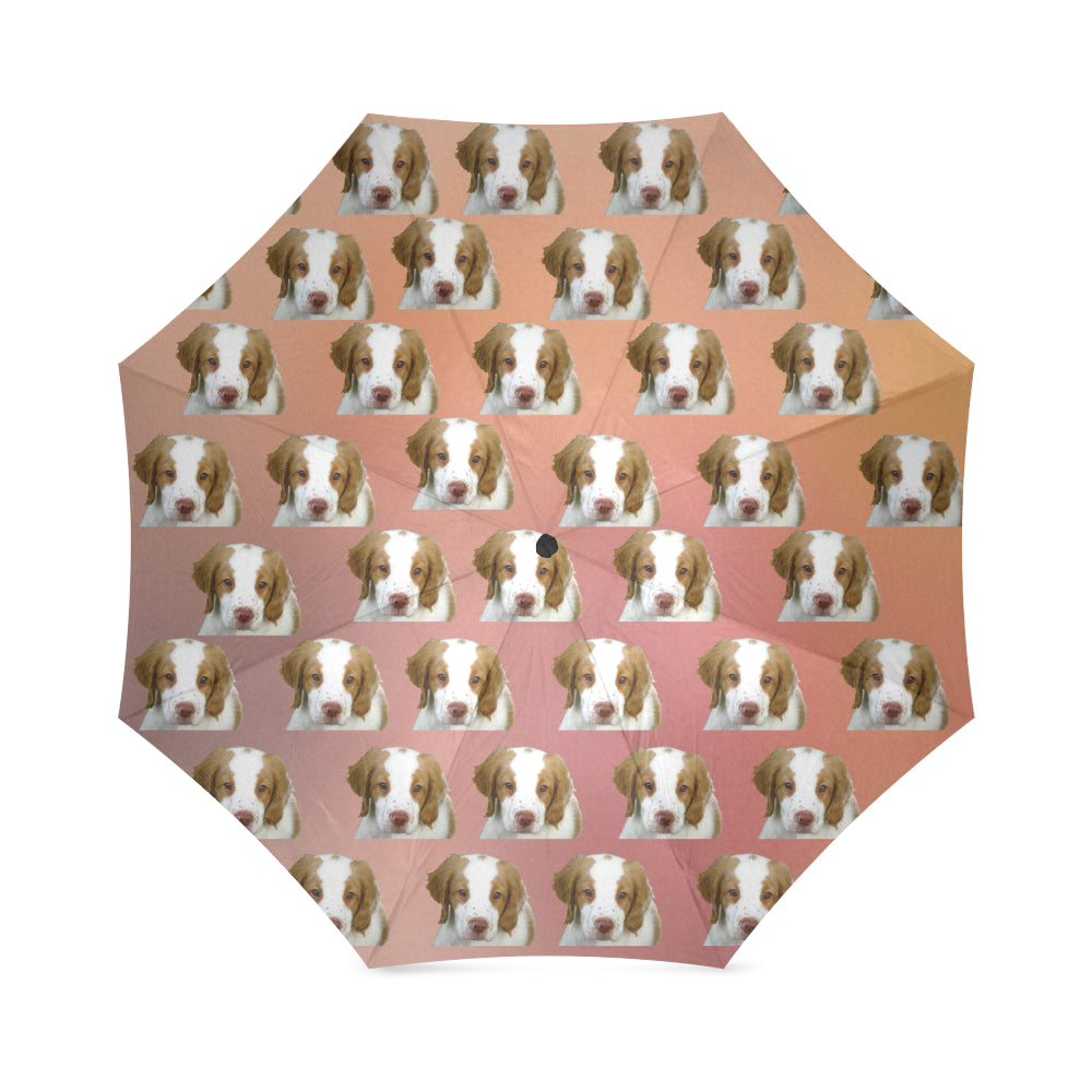 Brittany Spaniel Umbrella