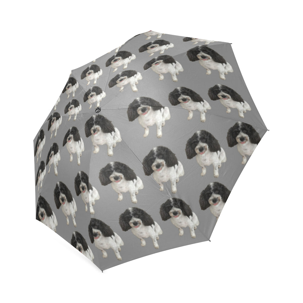 Cavapoo Umbrella - Grey