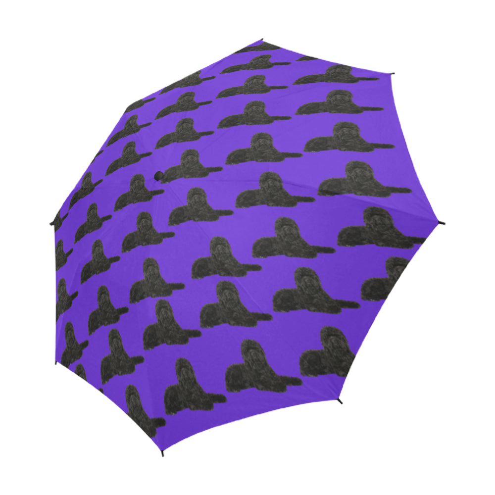 Black Labradoodle Umbrella