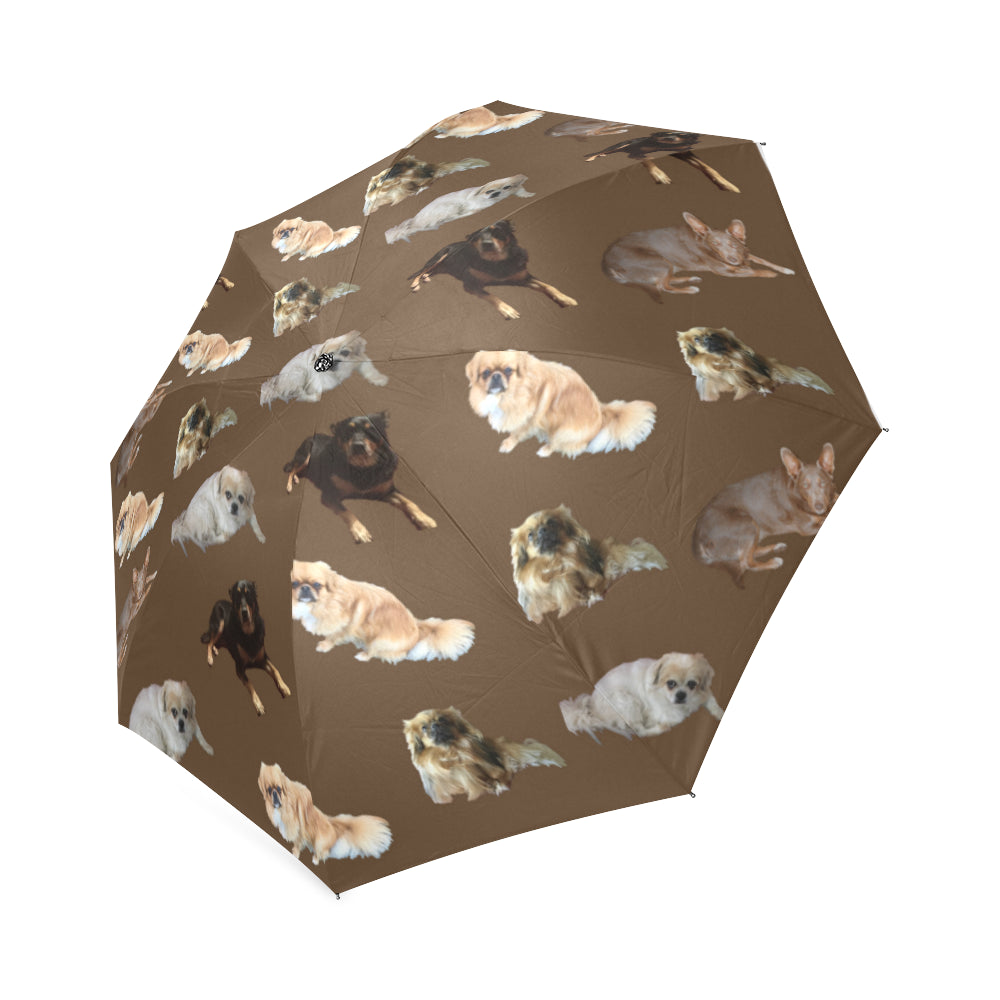 Tibetan Spaniels & Friends Umbrella