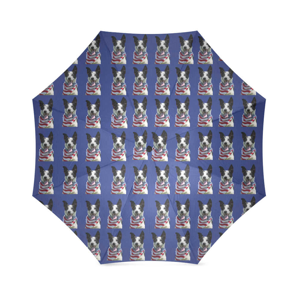 Cattle Border Collie Umbrella