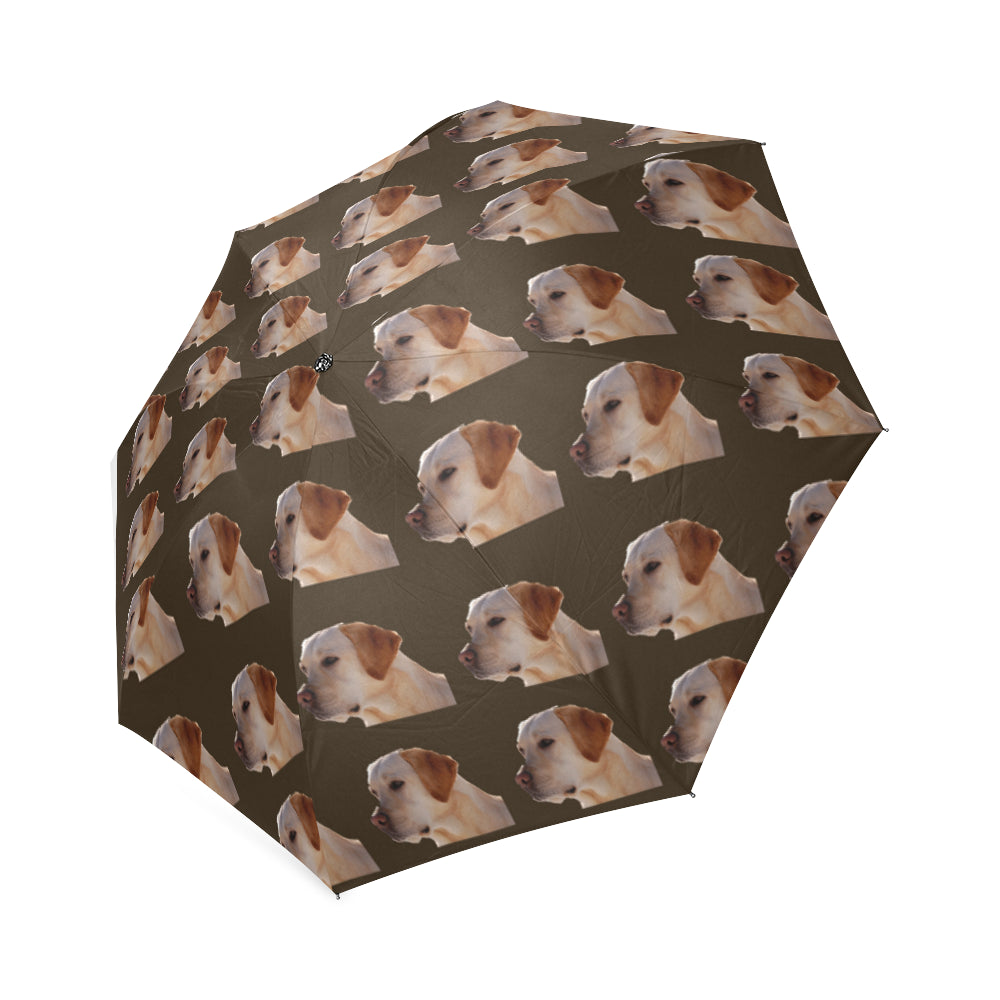 Yellow Labrador Umbrella