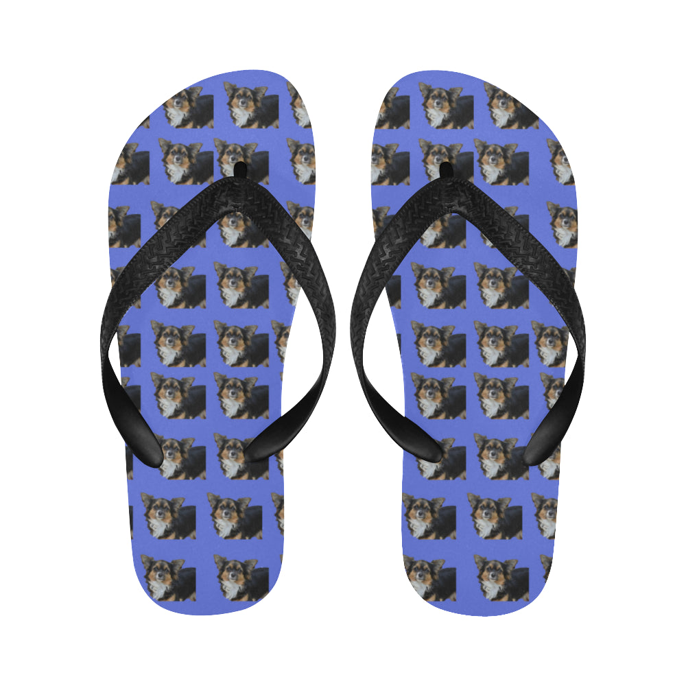 Chihuahua Flip Flops - Long Hair