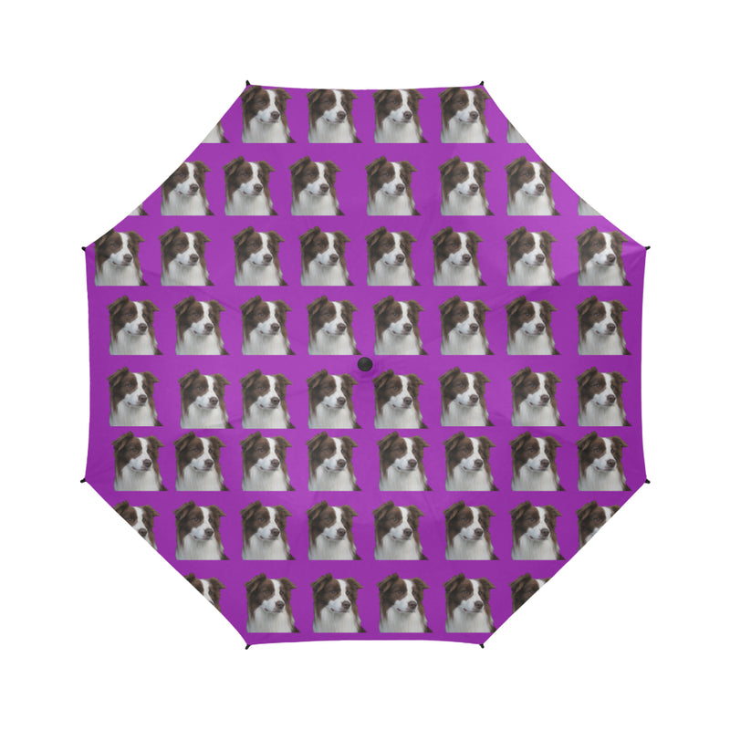 Border Collie Umbrella - Purple