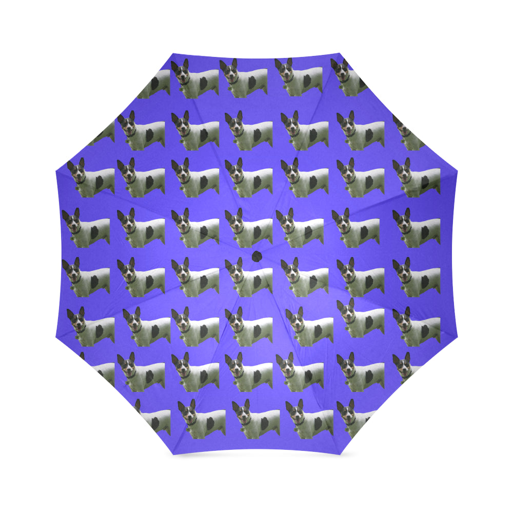 Rat Terrier Umbrella