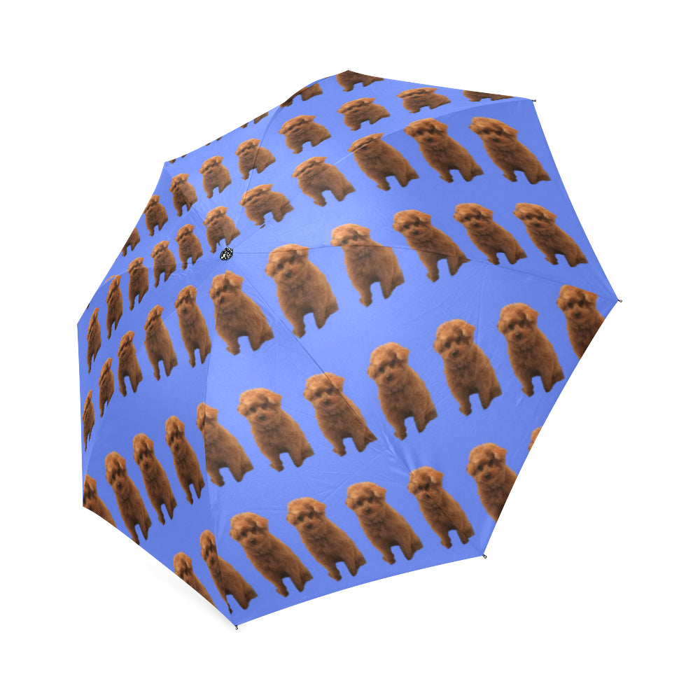 Red Poodle Umbrella