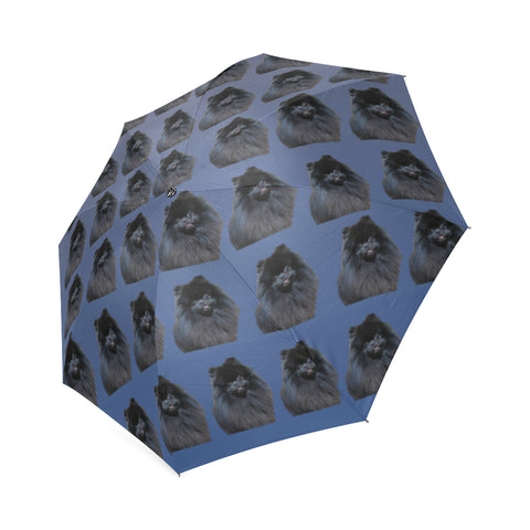 Pomeranian Umbrella - Black Pom