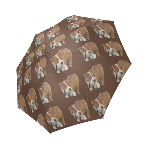 Pitbull Umbrella