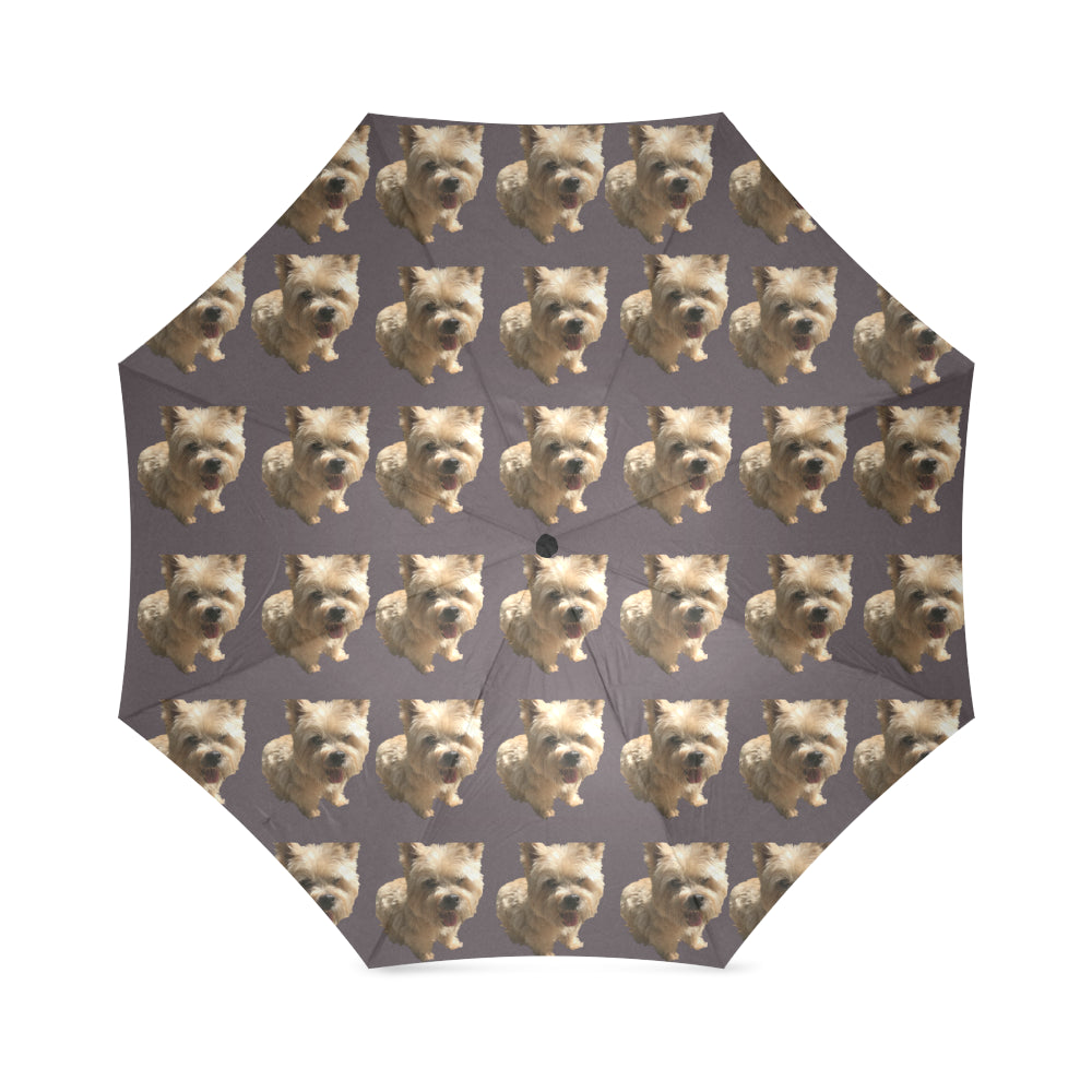 Norwich Terrier Umbrella