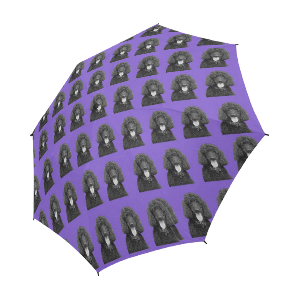 Poodle Umbrella - Black Standard Automatic Open
