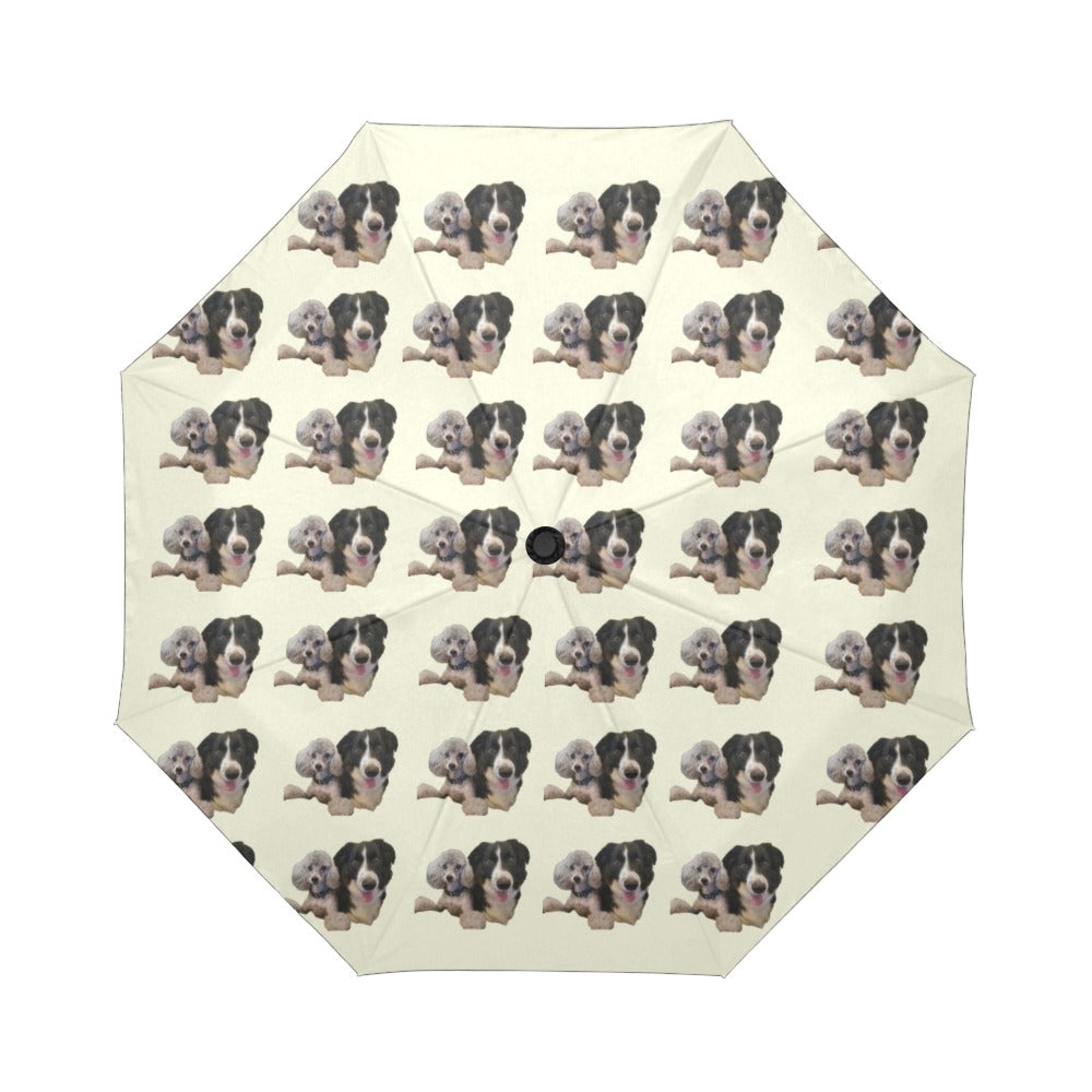 Border Collie & Poodle Umbrella - Automatic Suzanna