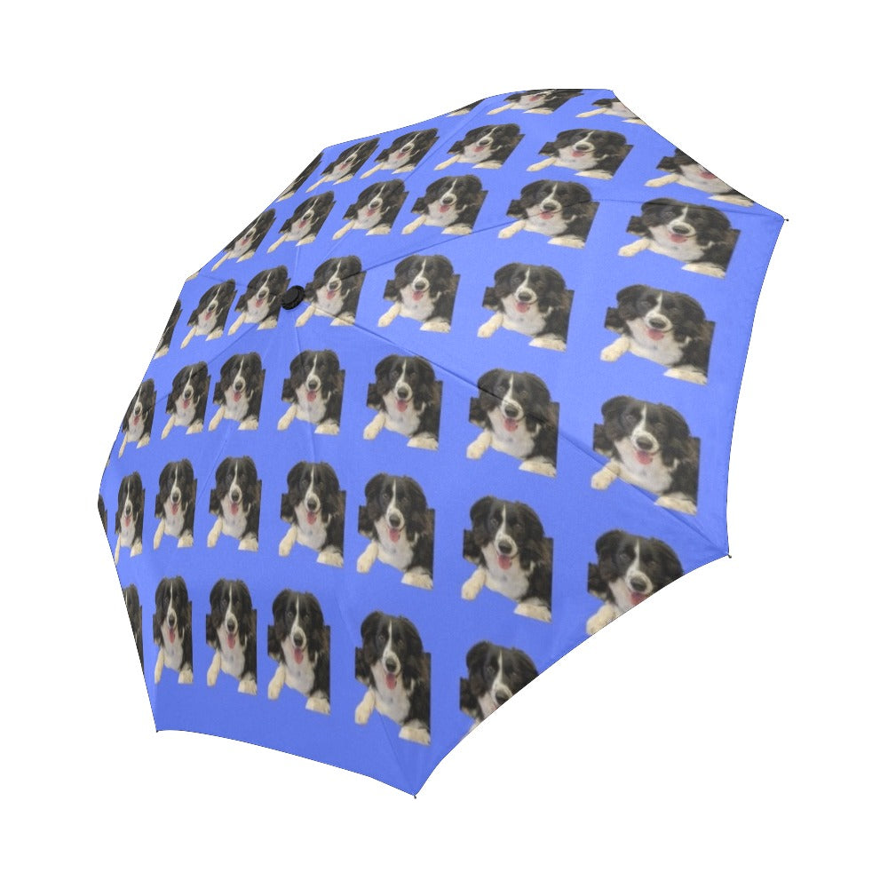 Border Collie Umbrella - Automatic Suzanna