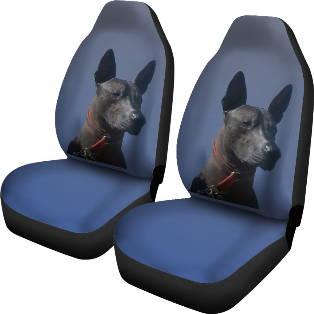Xoloitzcuintle Car Seat Cover