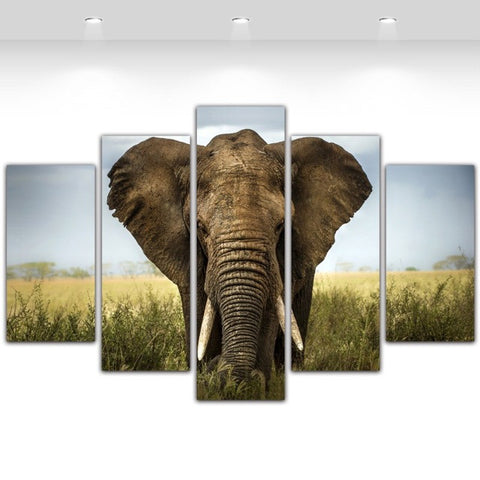 5 Panel Wild Life Canvas Wall Art