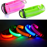 LED Night Safety Collar