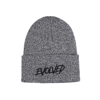 Evolved X Carhartt Beanie - (Dark Gray)