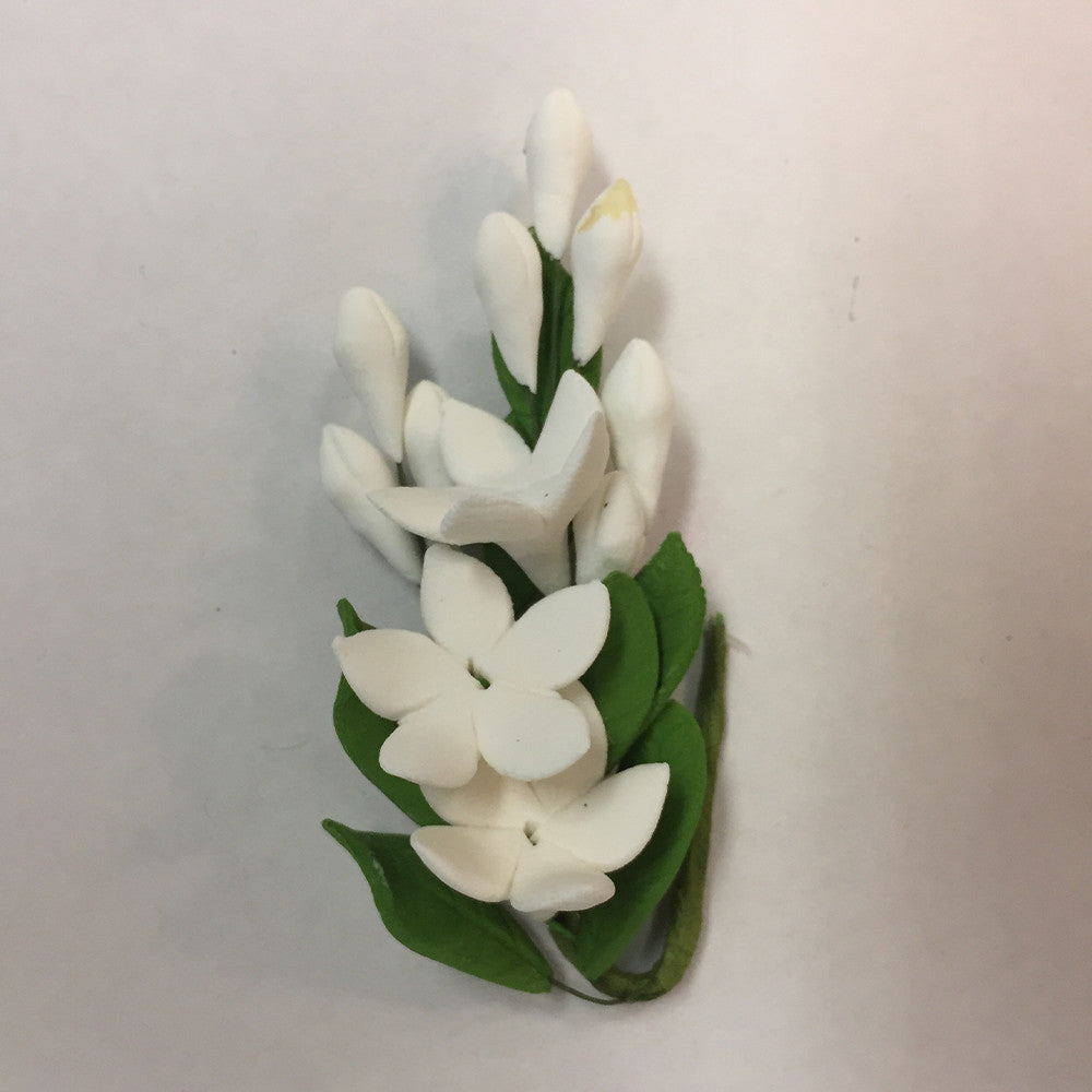 Small Stephanotis White
