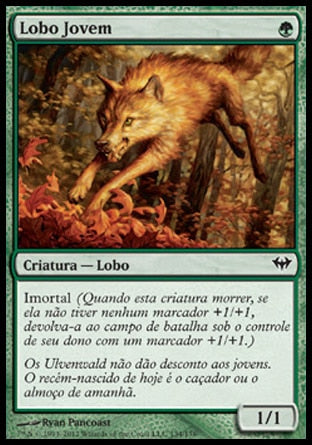 Lobo Jovem / Young Wolf-Magic: The Gathering-MoxLand
